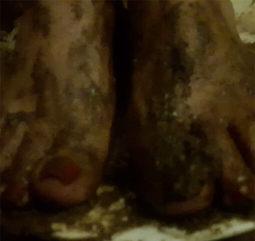 Slave Eating From Feet – Delicious Pastry
